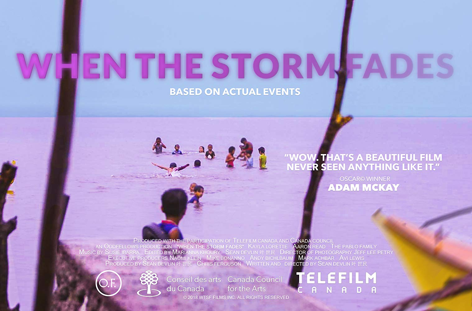 poster of when the storm fades